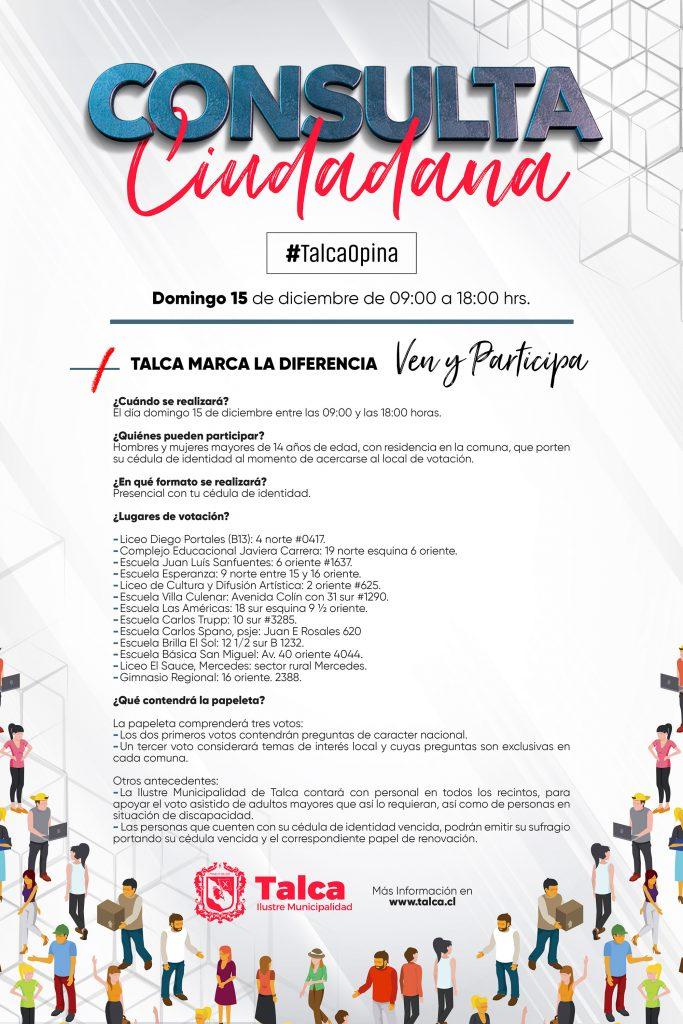 afiche-consulta-ciudadana
